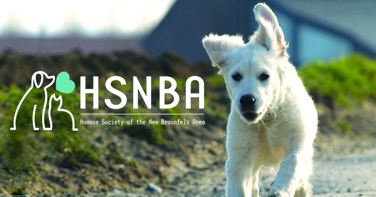 Adopt a Dog | Humane Society of the New Braunfels Area