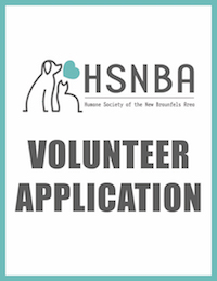 HSNBA volunteer application